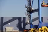 Port novembre decembre 2011 62.jpg