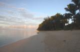 Dawn, Moana Sands 1