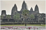 Temple d'Angkor - Cambogia