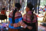 Two friends Flowers Hmong. Can Cau Market.