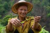 A Hmong. Close to Bao Lac.