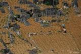 PLANTING CORN - DONG VAN PLATEAU