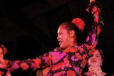 Flamenco at Ashkenaz 1-13-08