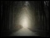 Darker Side of Light