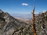 Owens Valley from Shepard's Pass Trail