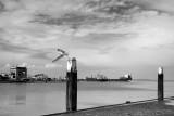 Harbour Walsoorden