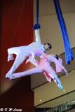 Jinan Acrobatic Troupe (濟南雜技團)