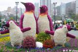 Hong Kong Flower Show 2012