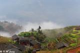 Dragons Backbone Rice Terraces (龍脊梯田)