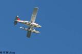 Sydney - Seaplanes (DSC_4846)