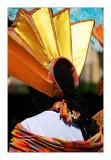 Paris Tropical Carnival 2011 - 1
