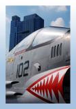 USS Intrepid Flying Deck 1