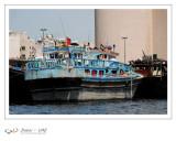 Dubaï - UAE - 166