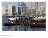 Dubaï - UAE - 167