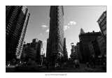 New York 100