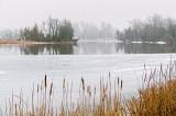 Foggy Rideau Canal 20110317