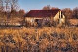 Old Barn In A Field 07716
