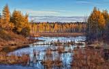 Wetlands At Sunrise 08046