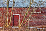 Broad Side Of A Barn 08054