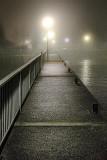 Foggy Walkway 08563-5