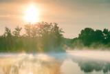 Misty Morning 20110620
