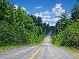 Canadian Shield Landscape DSCF02360