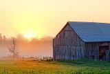 Barn In Sunrise 16671-80