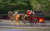 Horse-Drawn Carriage 20111007