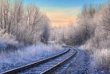 A Very Frosty Morning 20052