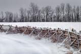 Snowy Rail Fence 20111230