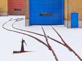 Tracks In Snow 20120109