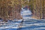 Wintry Back Road DSCF03615