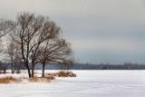 Frozen Lower Rideau Lake 20120131