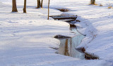Winter Stream 21218-9