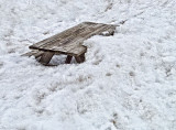 Buried Picnic Table 20120219