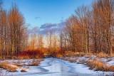 Winterscape At Sunrise 21720