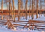 Snowscape At Sunrise 20120227