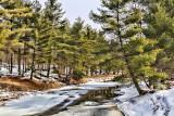 Winter Stream 21949