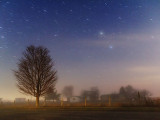 Starry Night 22219-22