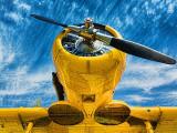 'The Yellow Peril' Harvard 20120505