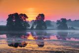 Misty Sunrise 24510