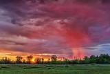 Sunrise Rain Shower 20120623