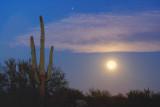 Desert Moonset 78173
