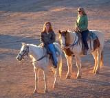 'Cowgirls' 78618