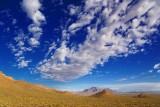 Desert Vista 78953