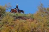 Trail Rider 20080108