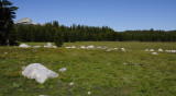 Aug 5 - Tuolumne Meadows