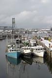 Gov't Wharf