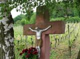 Cross and vineyard