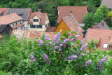 The roofs of Oberhambach